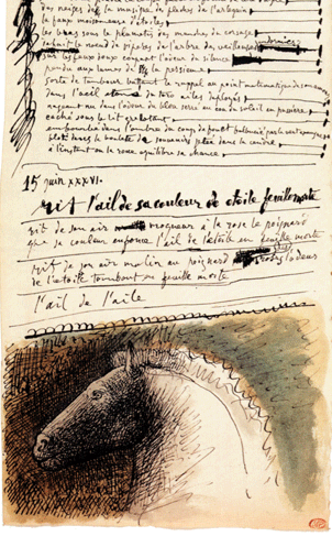 The Parchment Notebooks - Writings by Pablo Picasso