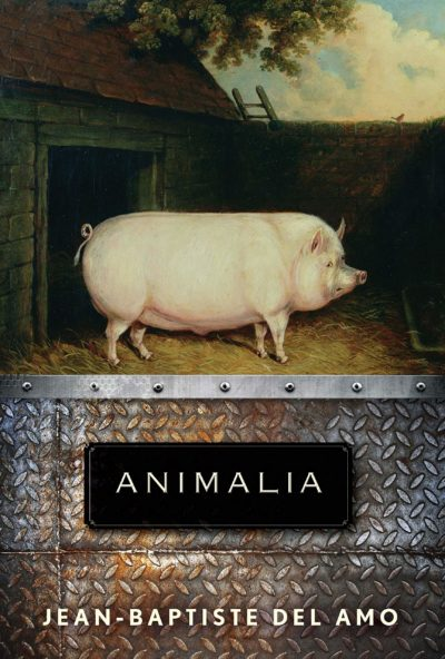 """Animalia"" makes BTBA Finalists"