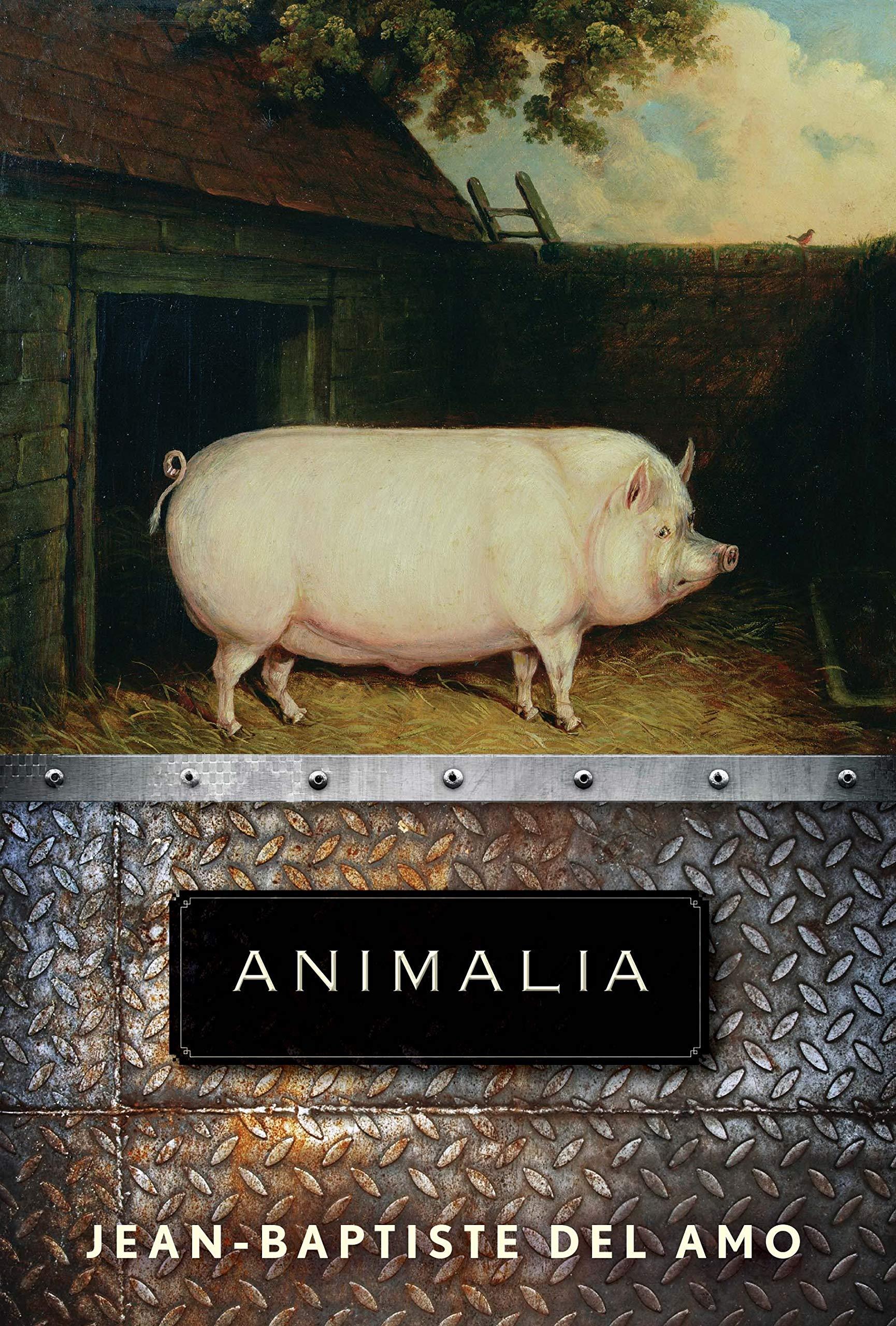 """Animalia"" makes BTBA Finalists"